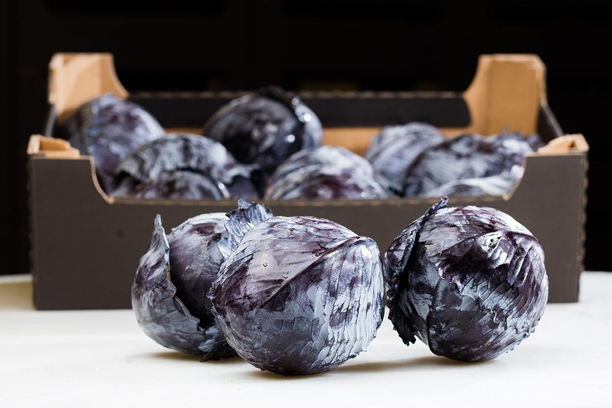 Dystrybutor owoców i warzyw Polska, Europa